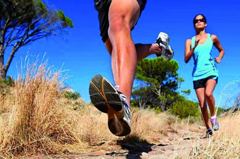 column Kims Life Coaching: Wellness Trail