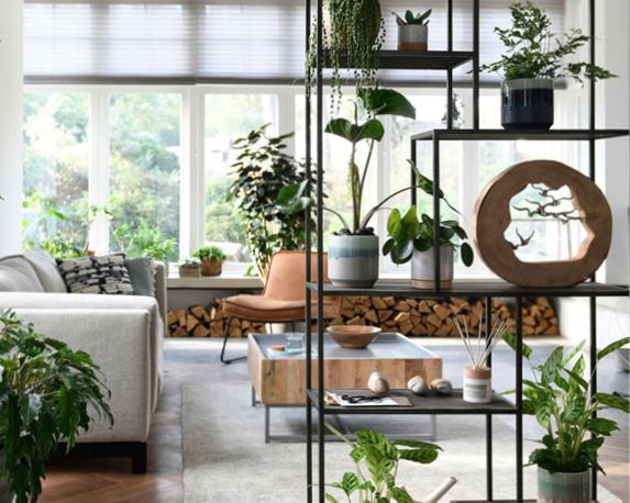 Verander je huis in een trendy jungle